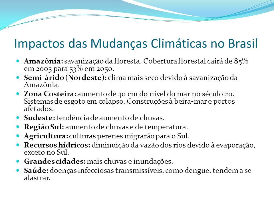 Impactos das Mudanças Climáticas no Brasil Amazônia: savanização da floresta.