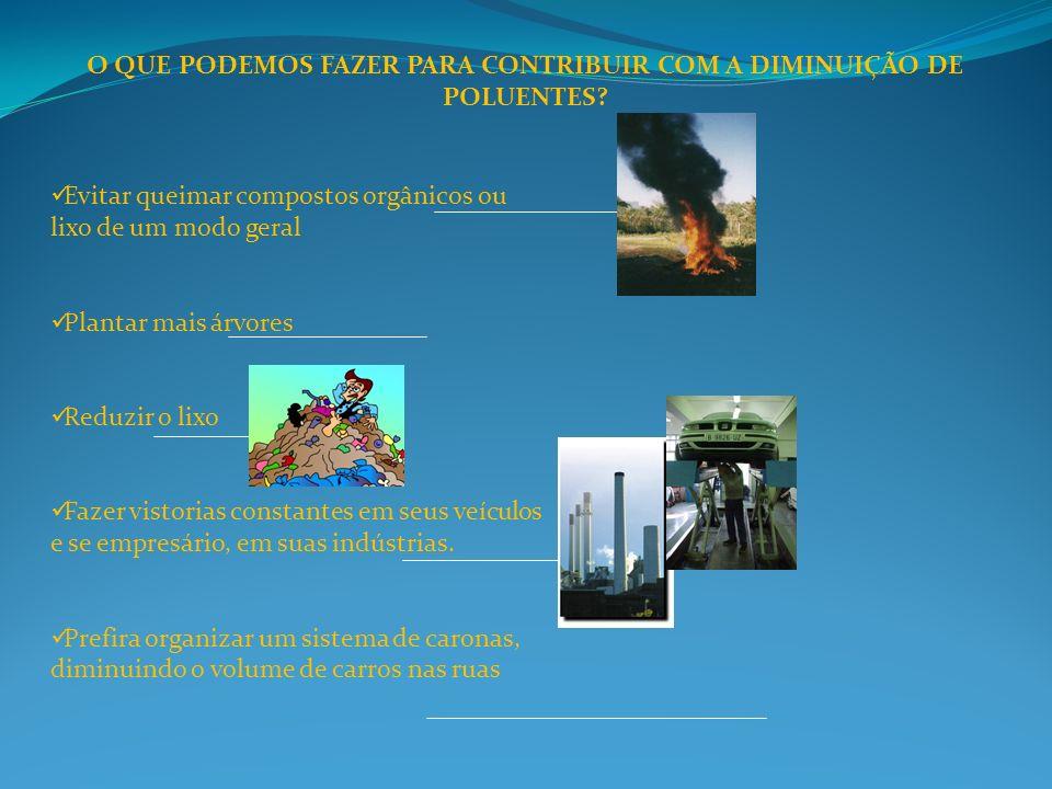 O QUE PODEMOS FAZER PARA CONTRIBUIR COM A DIMINUIÇÃO DE POLUENTES? Evitar queimar compostos orgânicos ou lixo de um modo geral Plantar mais árvores Re