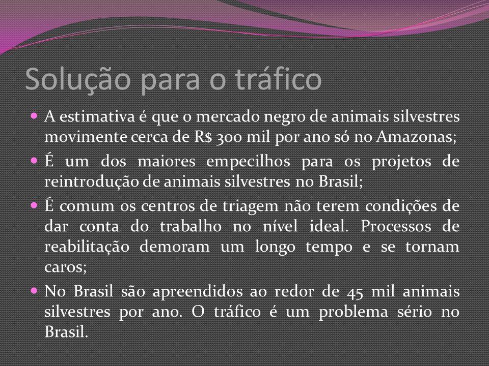 Solução para o tráfico A estimativa é que o mercado negro de animais silvestres movimente cerca de R$ 300 mil por ano só no Amazonas; É um dos maiores empecilhos para os projetos de reintrodução de animais silvestres no Brasil; É comum os centros de triagem não terem condições de dar conta do trabalho no nível ideal.
