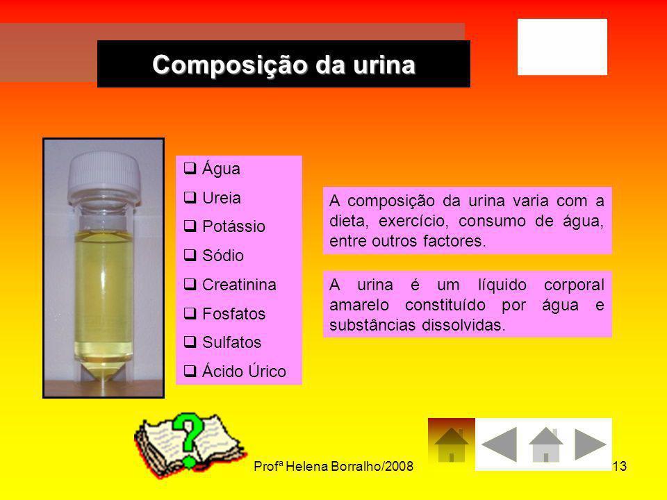 Profª Helena Borralho/200813 Composição da urina Água Ureia Potássio Sódio Creatinina Fosfatos Sulfatos Ácido Úrico A composição da urina varia com a