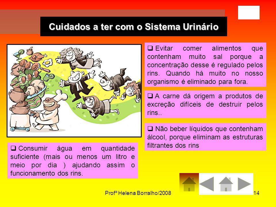 Profª Helena Borralho/200814 Cuidados a ter com o Sistema Urinário Evitar comer alimentos que contenham muito sal porque a concentração desse é regula