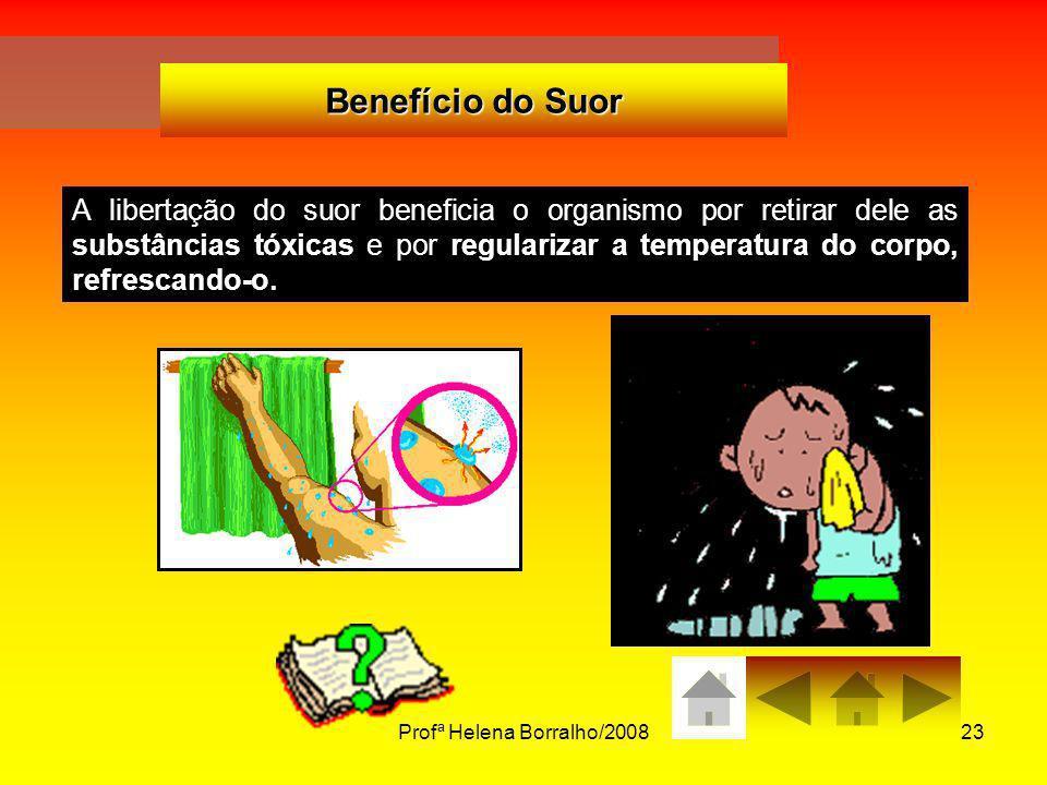 Profª Helena Borralho/200823 Benefício do Suor A libertação do suor beneficia o organismo por retirar dele as substâncias tóxicas e por regularizar a