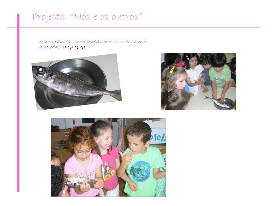 Vamos utilizar os nossos sentidos para descobrir algumas características dos peixes… Projecto: Nós e os outros