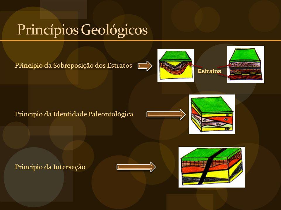 Princípios Geológicos Princípio da Sobreposição dos Estratos Estratos Princípio da Identidade Paleontológica Princípio da Interseção