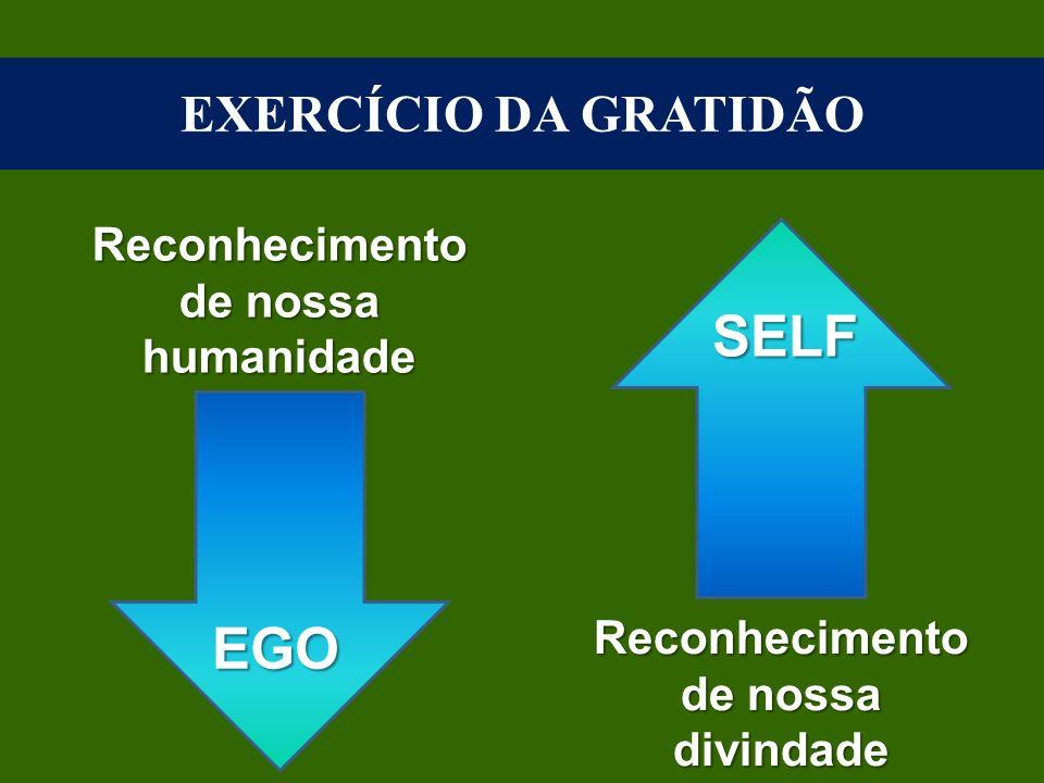 Conflitos Existenciais e o Atendimento Espiritual no Centro Espírita Transformação Moral Virtudes Reflexão Percepção Saúde Mental Ação Decisão Aceitaç