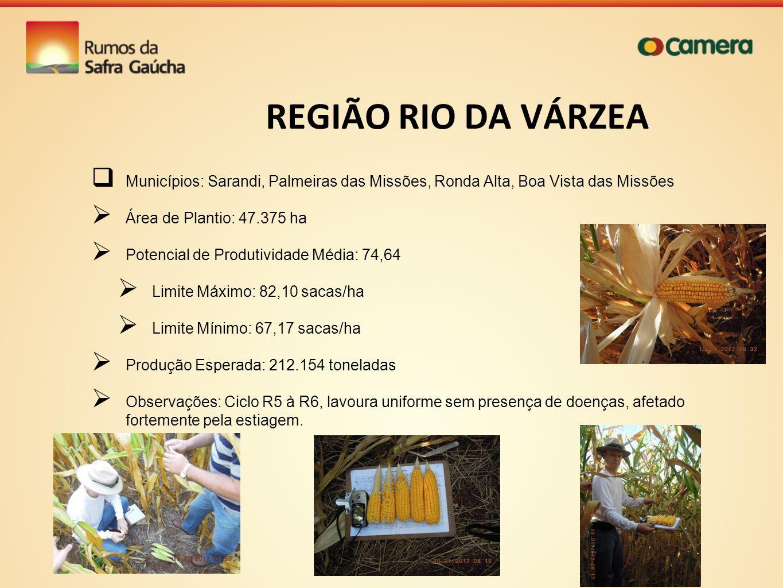 REGIÃO RIO DA VÁRZEA Municípios: Sarandi, Palmeiras das Missões, Ronda Alta, Boa Vista das Missões Área de Plantio: 47.375 ha Potencial de Produtivida