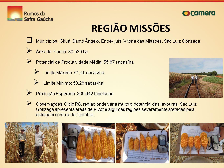 REGIÃO MISSÕES Municípios: Giruá, Santo Ângelo, Entre-Ijuís, Vitória das Missões, São Luiz Gonzaga Área de Plantio: 80.530 ha Potencial de Produtivida