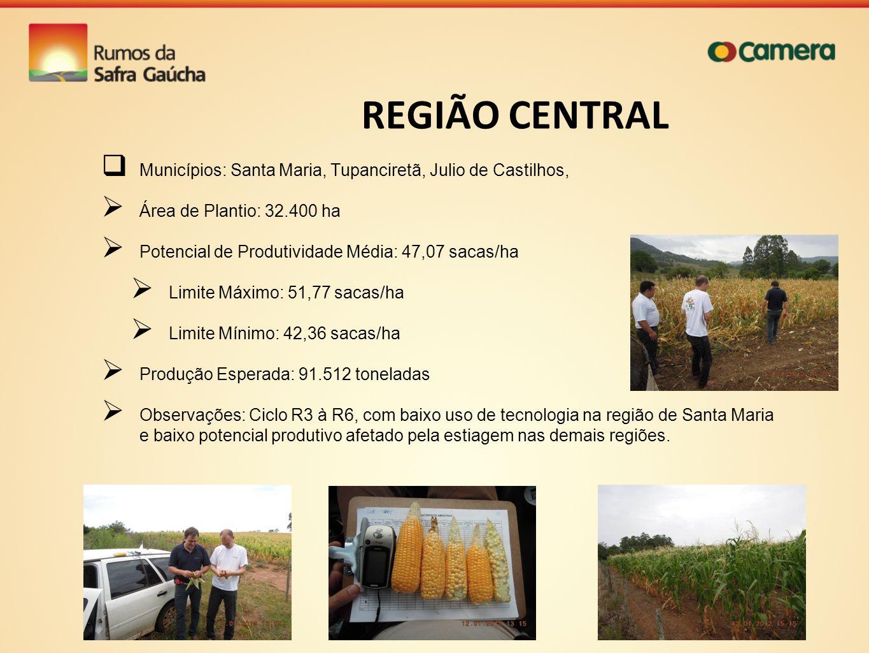 REGIÃO CENTRAL Municípios: Santa Maria, Tupanciretã, Julio de Castilhos, Área de Plantio: 32.400 ha Potencial de Produtividade Média: 47,07 sacas/ha L