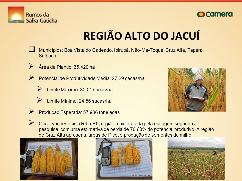 REGIÃO ALTO DO JACUÍ Municípios: Boa Vista do Cadeado, Ibirubá, Não-Me-Toque, Cruz Alta, Tapera, Selbach Área de Plantio: 35.420 ha Potencial de Produ