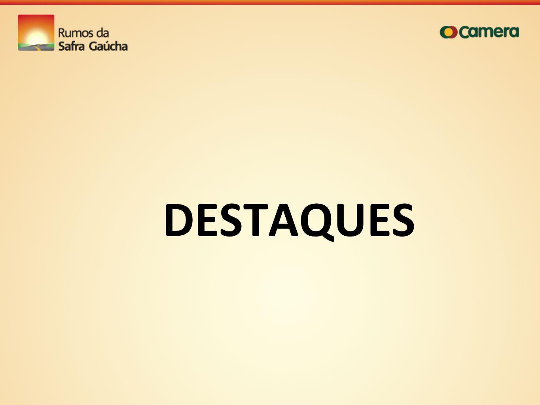 DESTAQUES