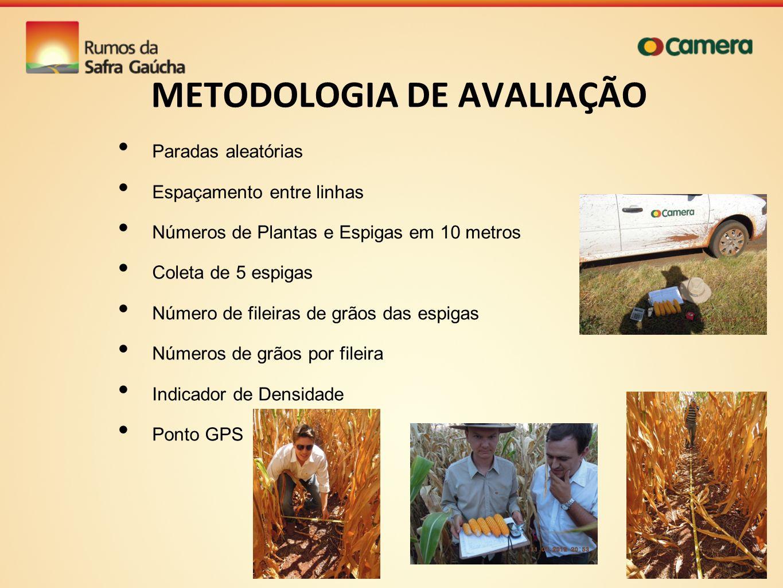 METODOLOGIA DE AVALIAÇÃO Paradas aleatórias Espaçamento entre linhas Números de Plantas e Espigas em 10 metros Coleta de 5 espigas Número de fileiras