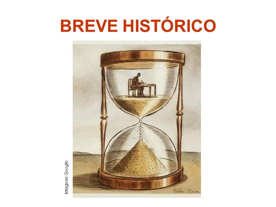BREVE HISTÓRICO Imagens Google