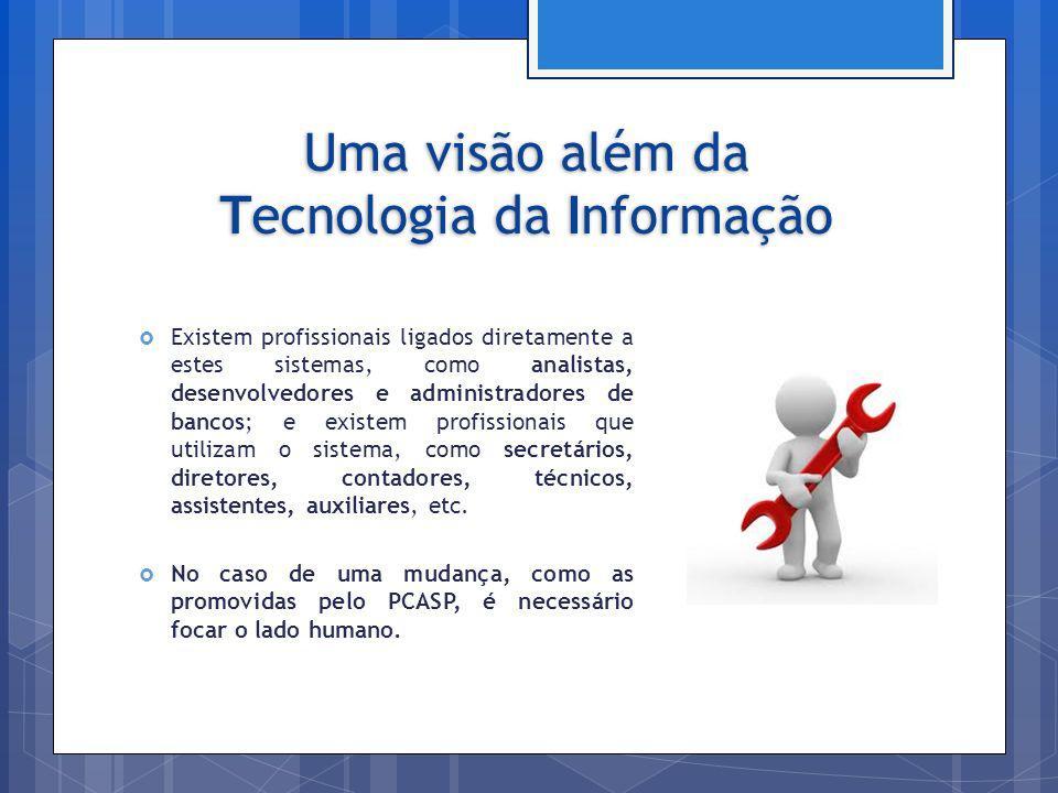 Uma visão além da Tecnologia da Informação Existem profissionais ligados diretamente a estes sistemas, como analistas, desenvolvedores e administrador