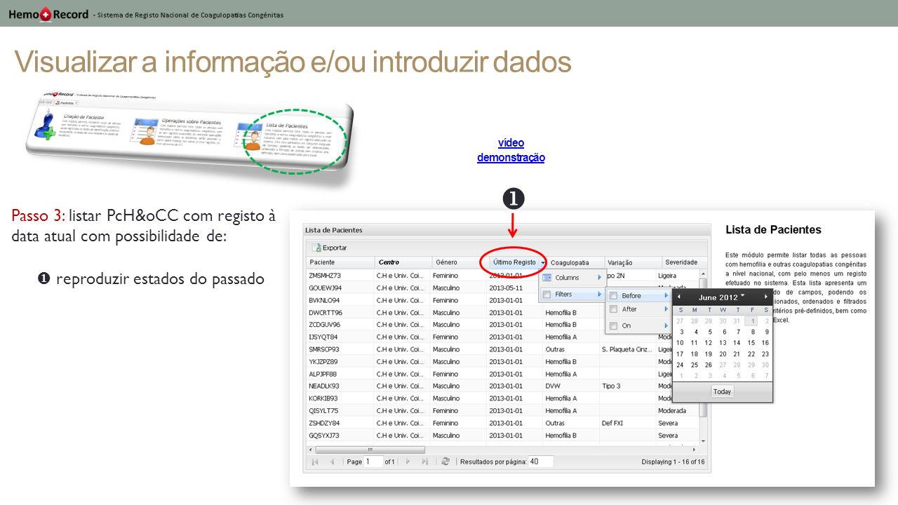 Visualizar a informação e/ou introduzir dados Passo 3: listar PcH&oCC com registo à data atual com possibilidade de: reproduzir estados do passado víd