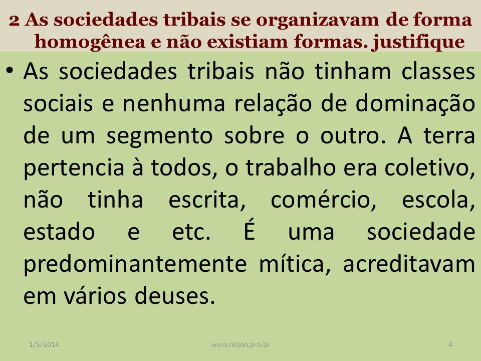 2 As sociedades tribais se organizavam de forma homogênea e não existiam formas. justifique As sociedades tribais não tinham classes sociais e nenhuma
