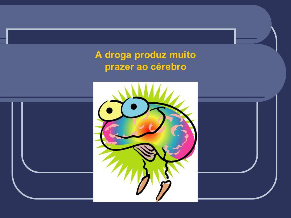 A droga produz muito prazer ao cérebro DROGA