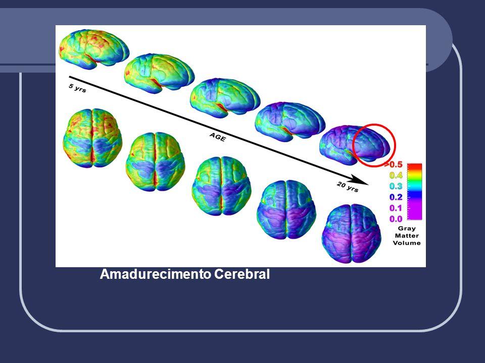 Amadurecimento Cerebral