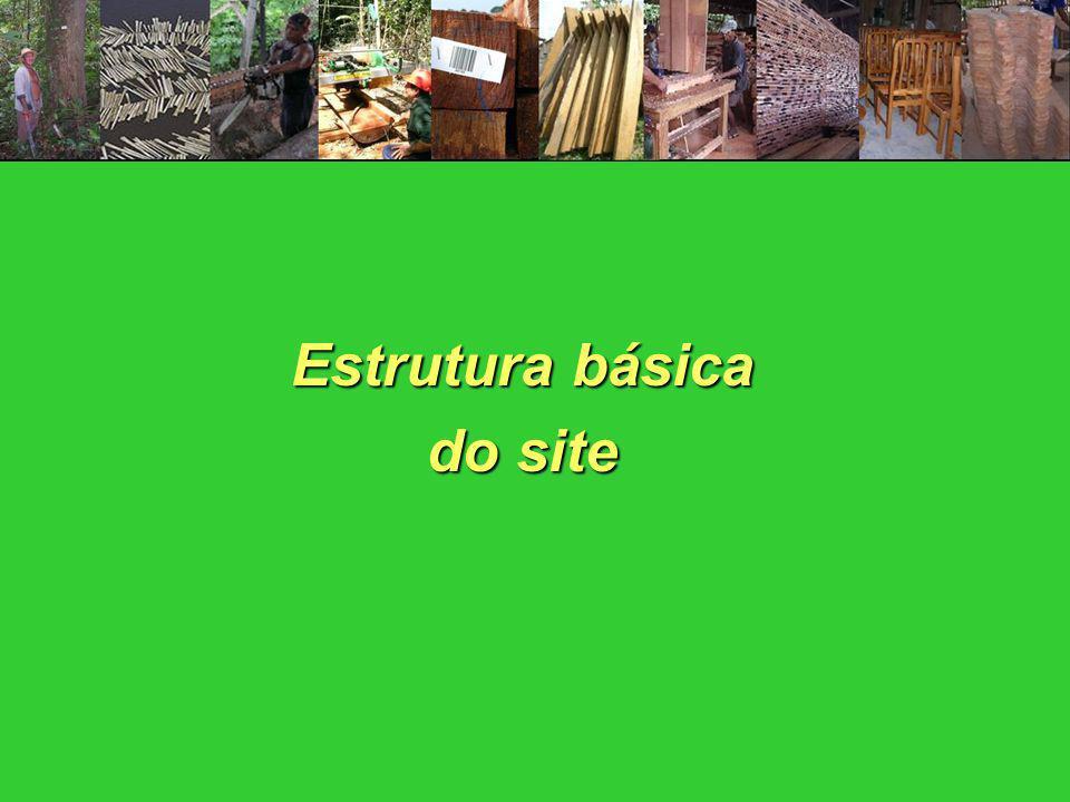 Estrutura básica do site