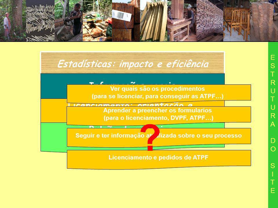 Estadísticas: impacto e eficiência ESTRUTURA DO SITEESTRUTURA DO SITE Informações gerais Licenciamento: orientação e acompanhamento de processo Balcão de negocios da madeira manejada Aprender a preencher os formularios (para o licenciamento, DVPF, ATPF…) Seguir e ter informação atualizada sobre o seu processo Ver quais são os procedimentos (para se licenciar, para conseguir as ATPF…) Licenciamento e pedidos de ATPF ?