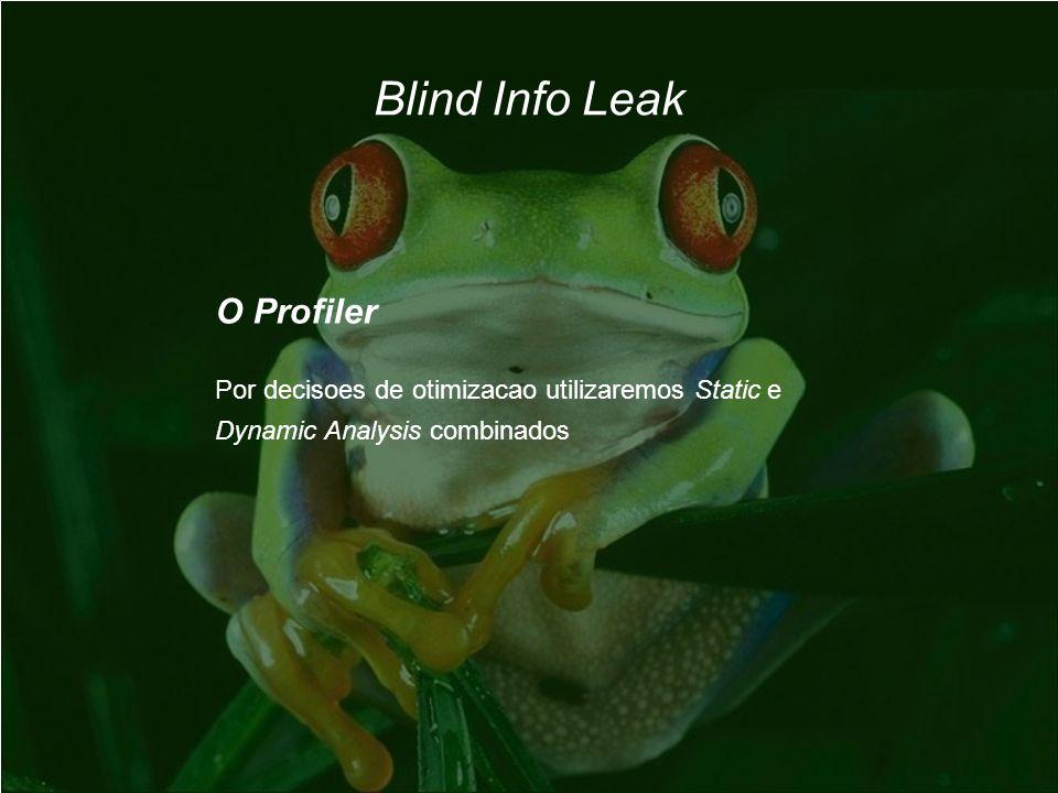 Blind Info Leak O Profiler Por decisoes de otimizacao utilizaremos Static e Dynamic Analysis combinados