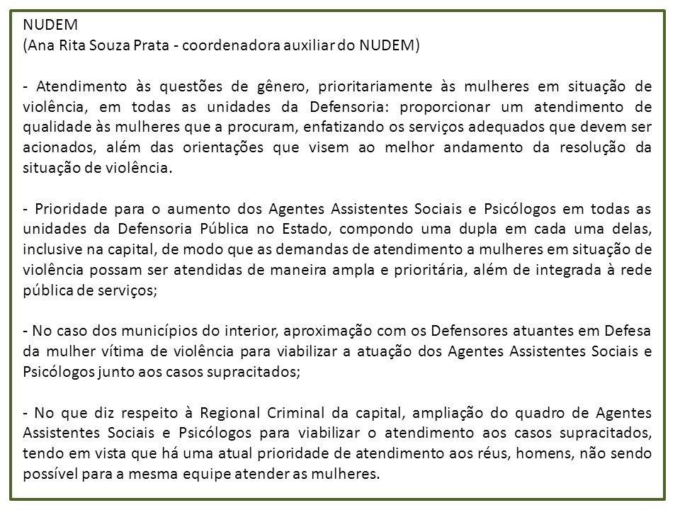 NUDEM (Ana Rita Souza Prata - coordenadora auxiliar do NUDEM) - Atendimento às questões de gênero, prioritariamente às mulheres em situação de violênc