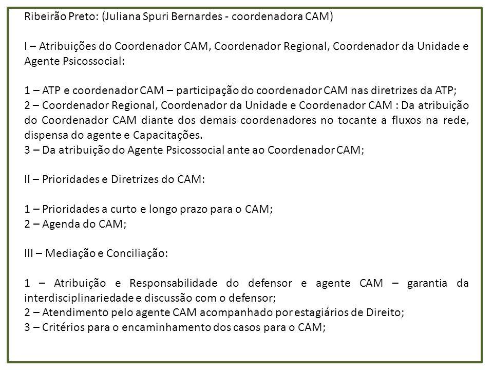 Campinas: (Giuliano D Andrea - coordenador CAM) - Distribuição dos cargos: Acredito que nas unidades funcionais da Defensoria, o ideal é haver pelo menos uma dupla de agentes por unidade.