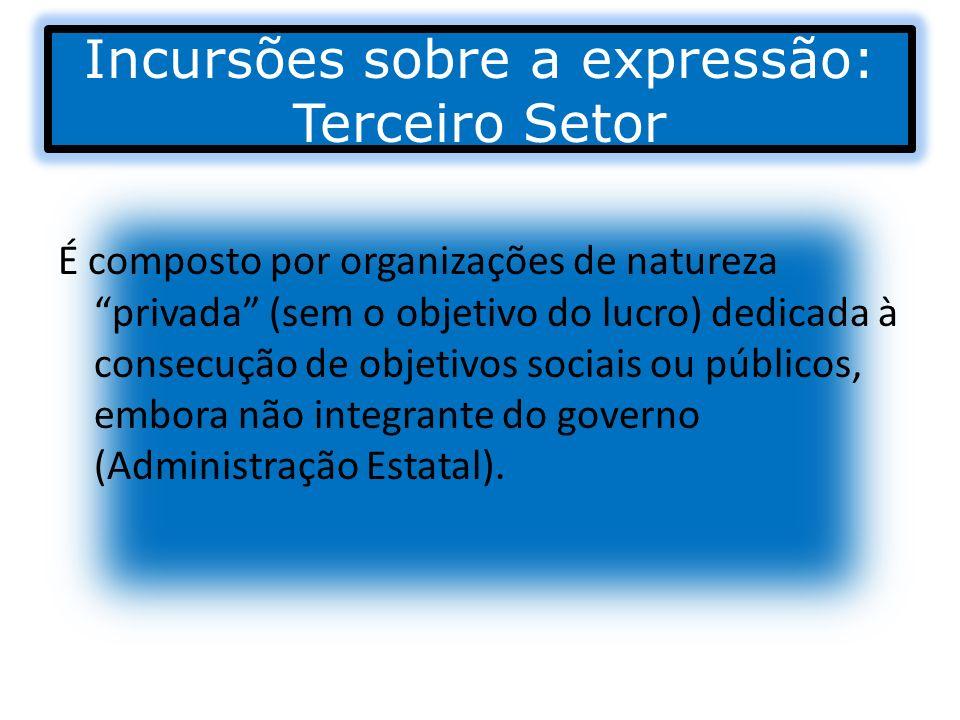 Incursões sobre a expressão: Terceiro Setor É composto por organizações de natureza privada (sem o objetivo do lucro) dedicada à consecução de objetiv