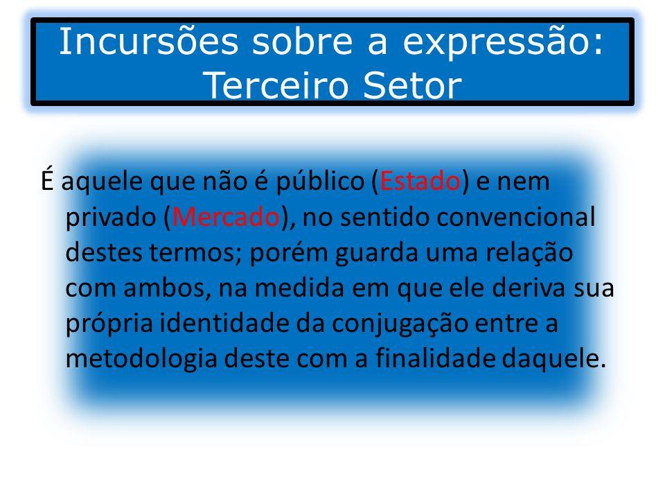 Incursões sobre a expressão: Terceiro Setor É composto por organizações de natureza privada (sem o objetivo do lucro) dedicada à consecução de objetivos sociais ou públicos, embora não integrante do governo (Administração Estatal).