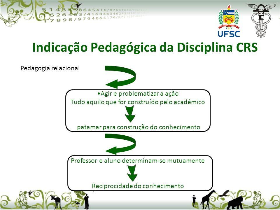 Pedagogia relacional Agir e problematizar a ação Tudo aquilo que for construído pelo acadêmico patamar para construção do conhecimento Professor e alu