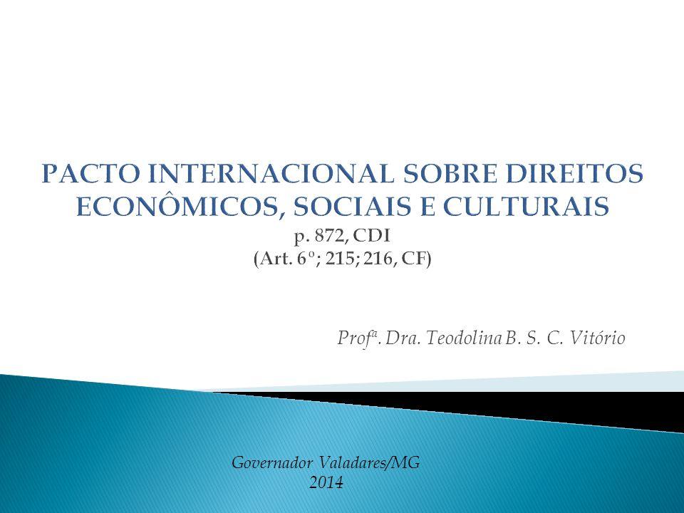 Profª. Dra. Teodolina B. S. C. Vitório Governador Valadares/MG 2014