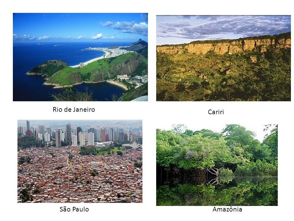 Rio de Janeiro São PauloAmazônia Cariri