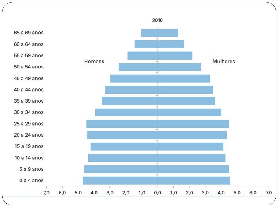 Motivação Segundo o IBGE a população brasileira com mais de 60 anos dobrou nos últimos 50 anos. A pirâmide populacional no Brasil vai progressivamente