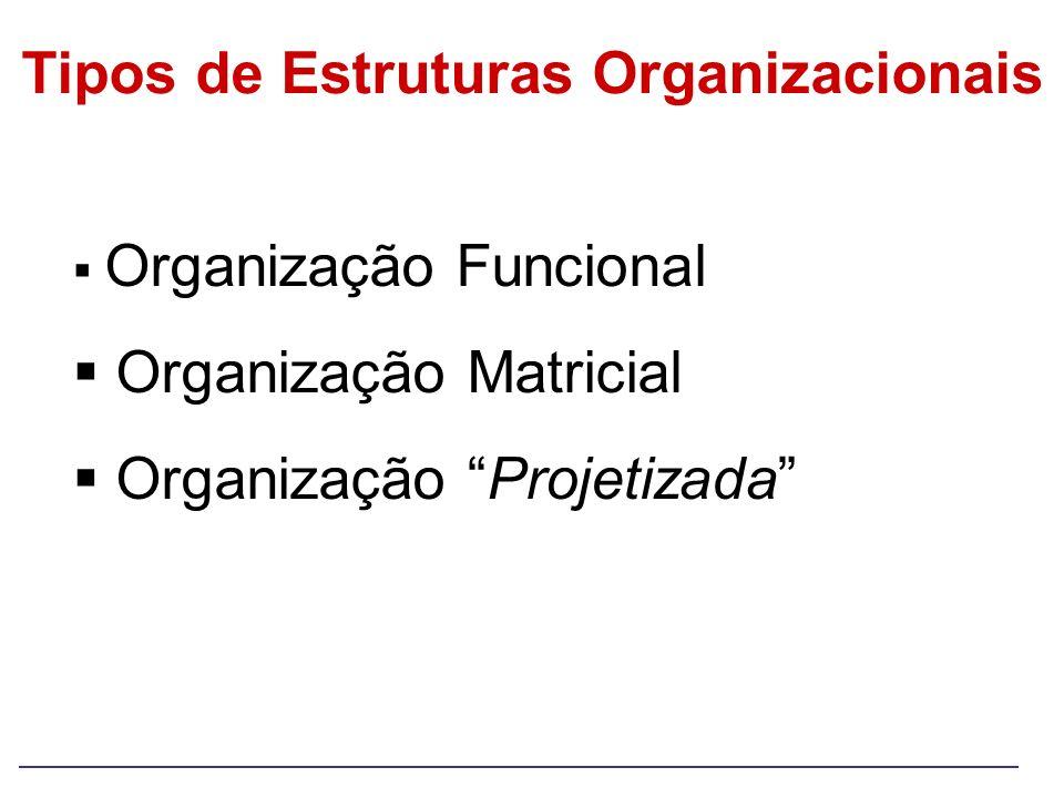 Tipos de Estruturas Organizacionais Organização Funcional Organização Matricial Organização Projetizada