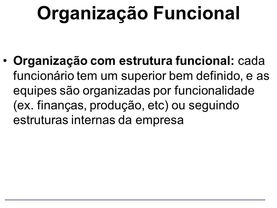Organização Funcional Organização com estrutura funcional: cada funcionário tem um superior bem definido, e as equipes são organizadas por funcionalid
