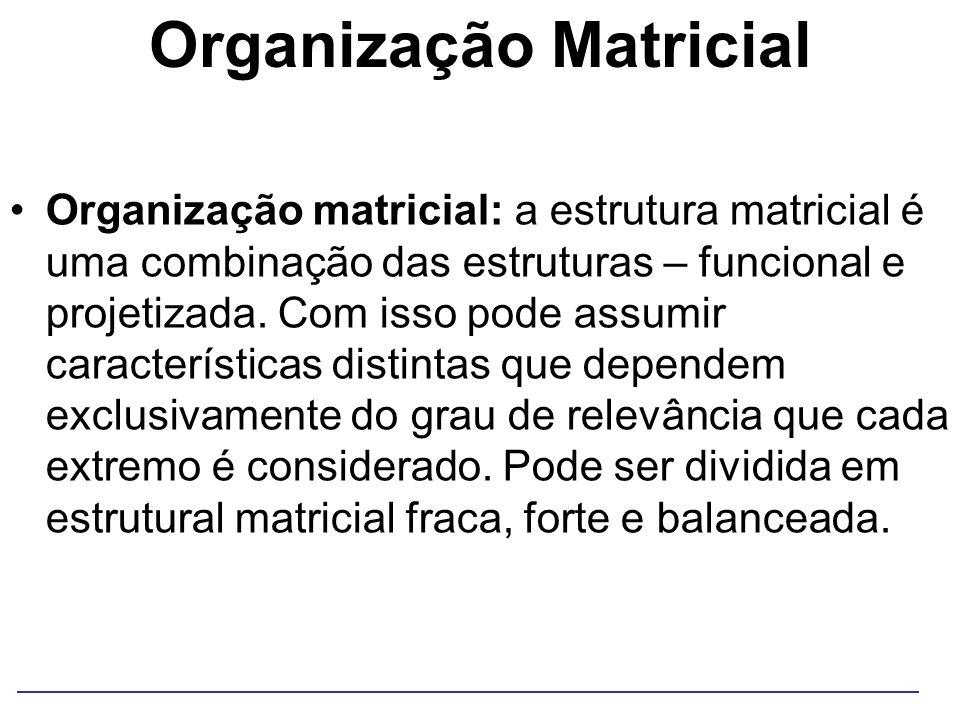 Organização Matricial Organização matricial: a estrutura matricial é uma combinação das estruturas – funcional e projetizada. Com isso pode assumir ca