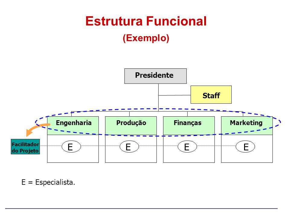 Estrutura Funcional (Exemplo) Presidente Staff EngenhariaProduçãoFinançasMarketing Facilitador do Projeto EEEE E = Especialista.
