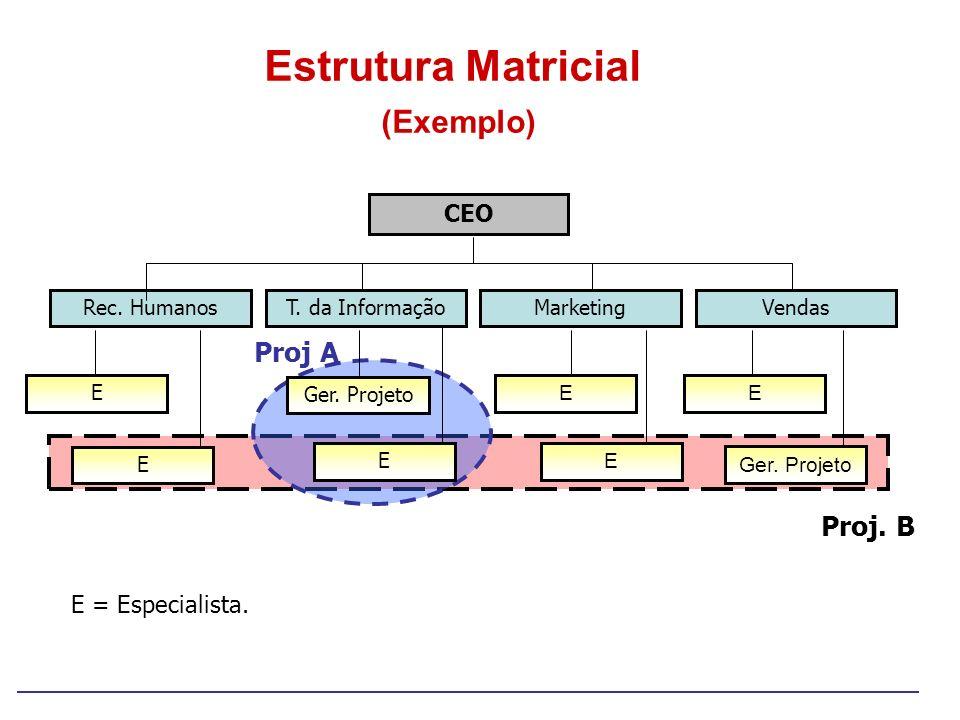 Estrutura Matricial (Exemplo) CEO Rec. Humanos E E Ger. Projeto E E E VendasT. da Informação E Marketing Proj A Proj. B E = Especialista.