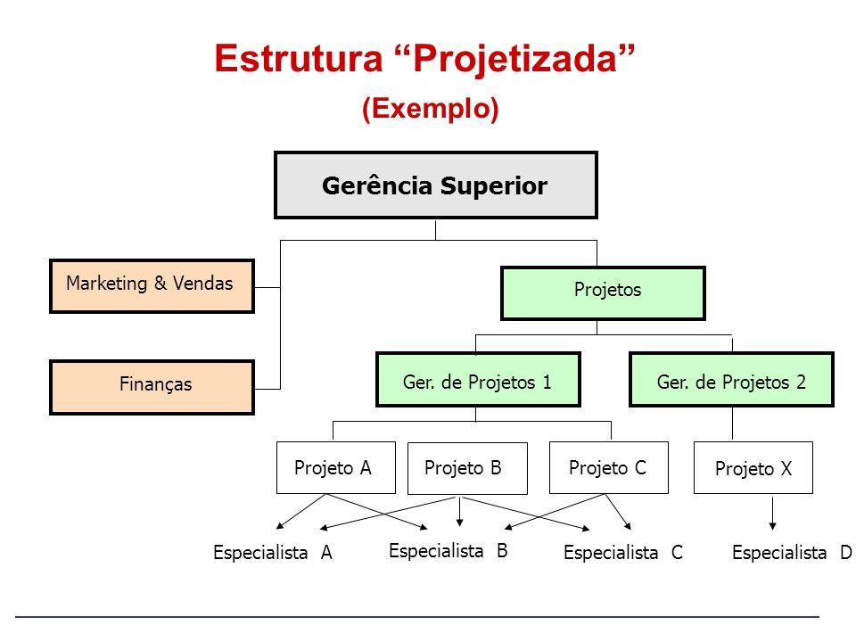 Gerência Superior Ger. de Projetos 2 Finanças Marketing & Vendas Projetos Ger. de Projetos 1 Projeto A Projeto BProjeto X Especialista A Especialista