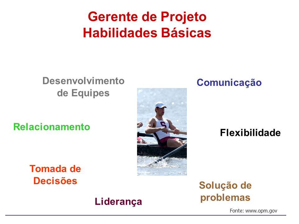 Gerente de Projeto Habilidades Básicas Comunicação Relacionamento Liderança Tomada de Decisões Flexibilidade Solução de problemas Desenvolvimento de E