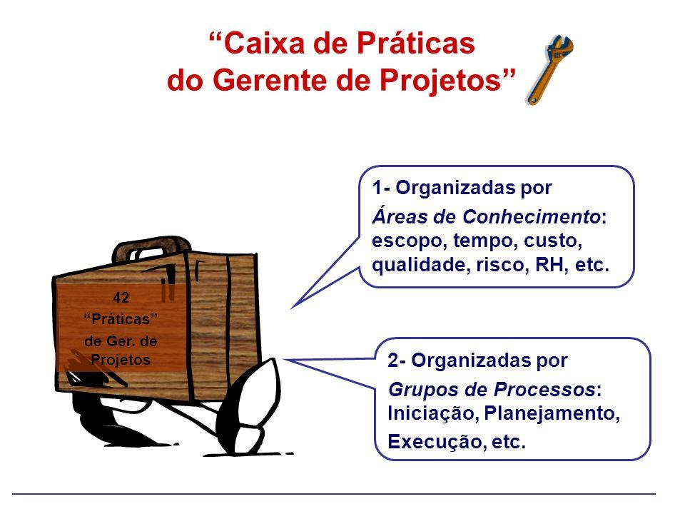 Caixa de Práticas do Gerente de Projetos 2- Organizadas por Grupos de Processos: Iniciação, Planejamento, Execução, etc. 1- Organizadas por Áreas de C