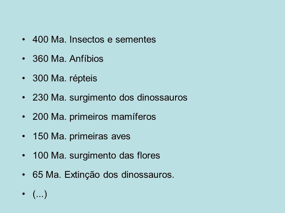 400 Ma. Insectos e sementes 360 Ma. Anfíbios 300 Ma. répteis 230 Ma. surgimento dos dinossauros 200 Ma. primeiros mamíferos 150 Ma. primeiras aves 100