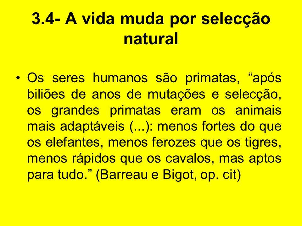 3.4- A vida muda por selecção natural Os seres humanos são primatas, após biliões de anos de mutações e selecção, os grandes primatas eram os animais