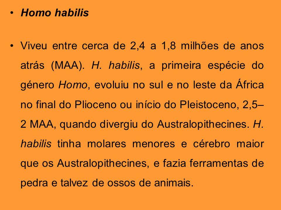 Homo habilis Viveu entre cerca de 2,4 a 1,8 milhões de anos atrás (MAA). H. habilis, a primeira espécie do género Homo, evoluiu no sul e no leste da Á
