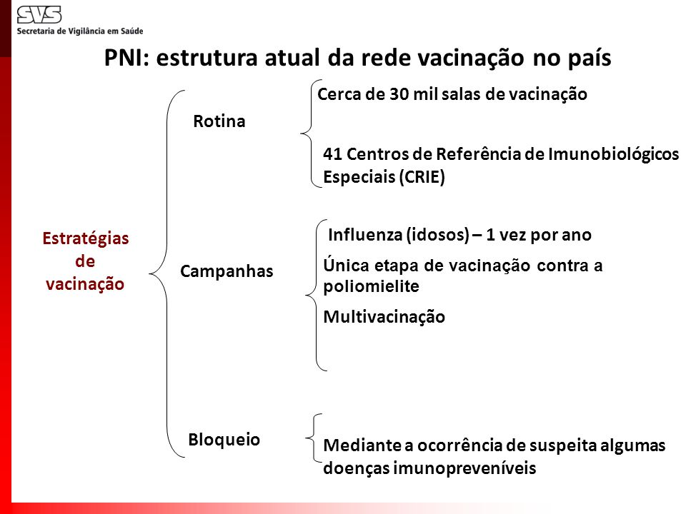 Estratégias de vacinação Rotina Campanhas 41 Centros de Referência de Imunobiológicos Especiais (CRIE) Influenza (idosos) – 1 vez por ano Multivacinaç