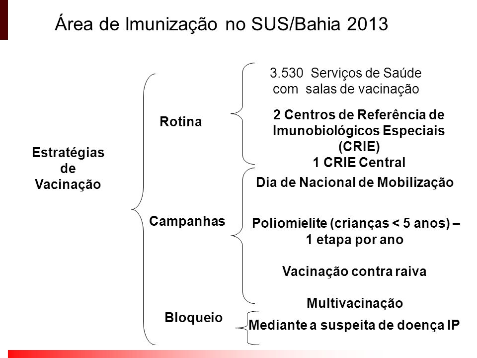 Estratégias de Vacinação Rotina Campanhas 3.530 Serviços de Saúde com salas de vacinação 2 Centros de Referência de Imunobiológicos Especiais (CRIE) 1
