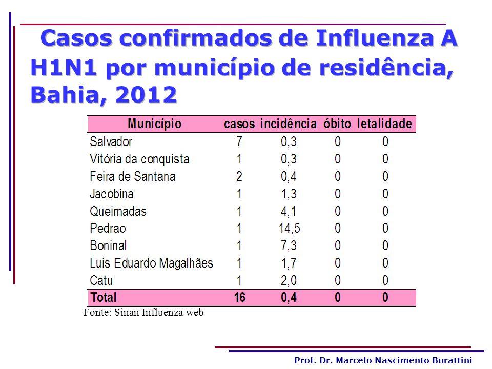 Prof. Dr. Marcelo Nascimento Burattini Fonte: Sinan Influenza web