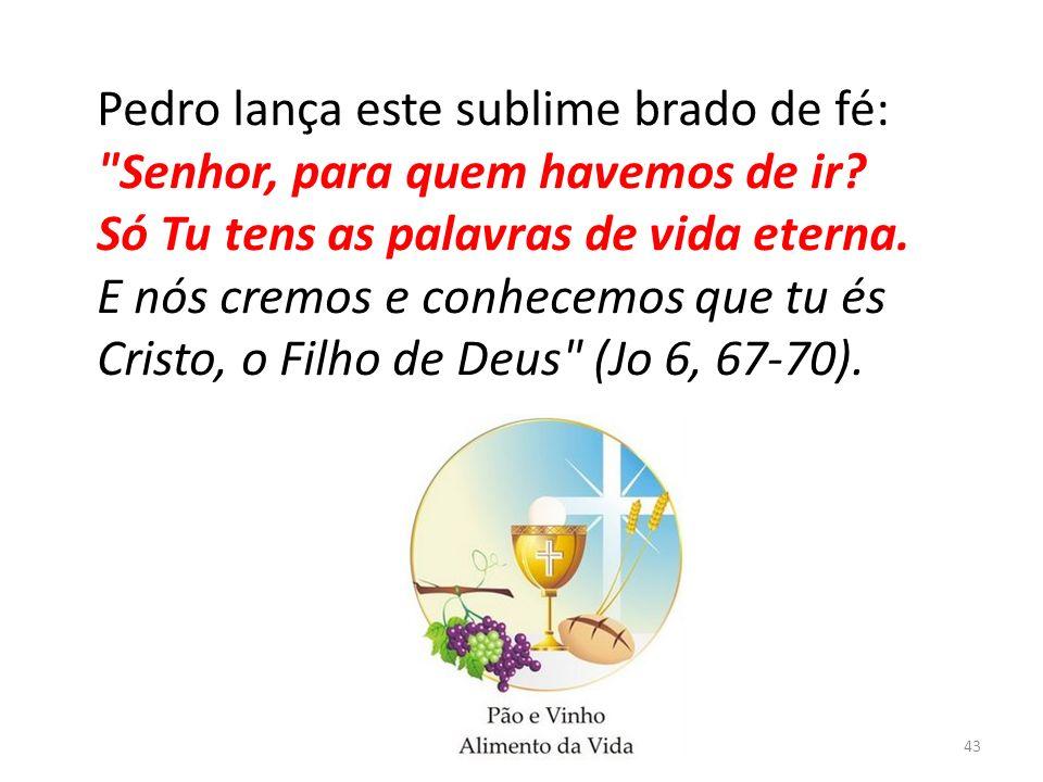 43 Pedro lança este sublime brado de fé: Senhor, para quem havemos de ir.