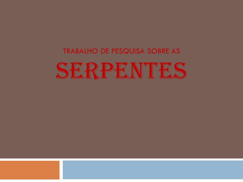 As serpentes são répteis que, possuindo esqueleto interno, pertencem ao grupo dos animais vertebrados.