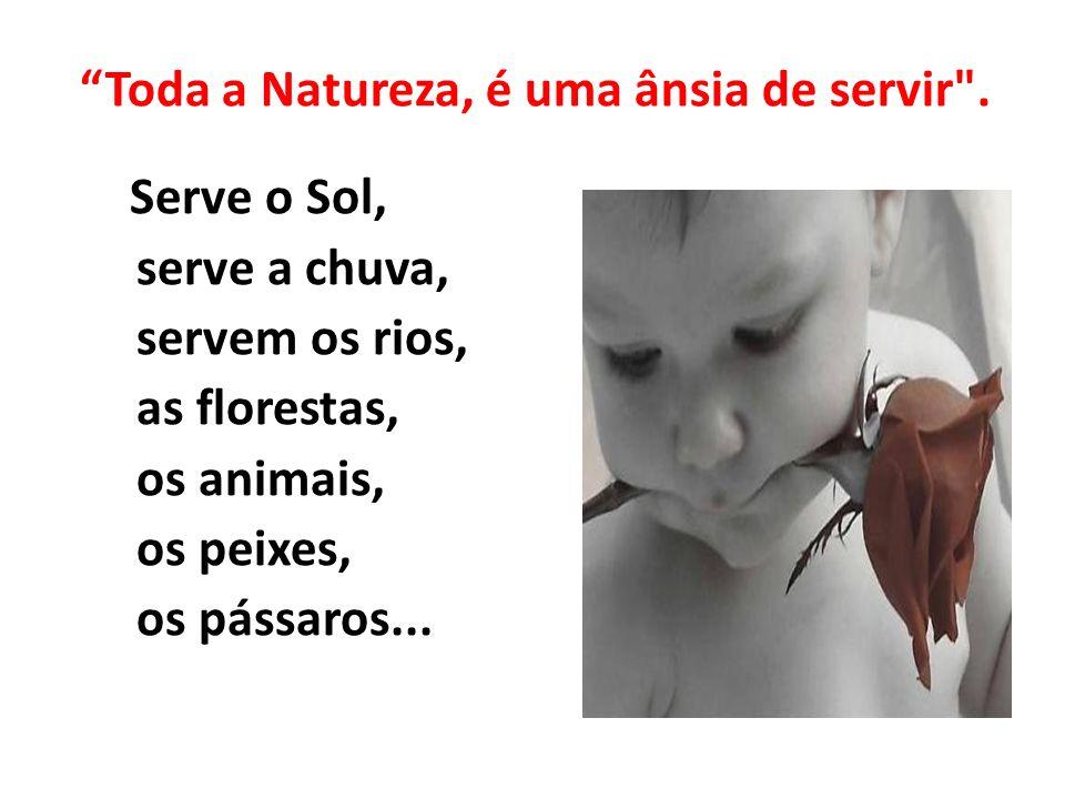 Toda a Natureza, é uma ânsia de servir
