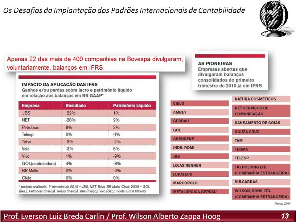 Prof. Everson Luiz Breda Carlin / Prof. Wilson Alberto Zappa Hoog 13 Os Desafios da Implantação dos Padrões Internacionais de Contabilidade